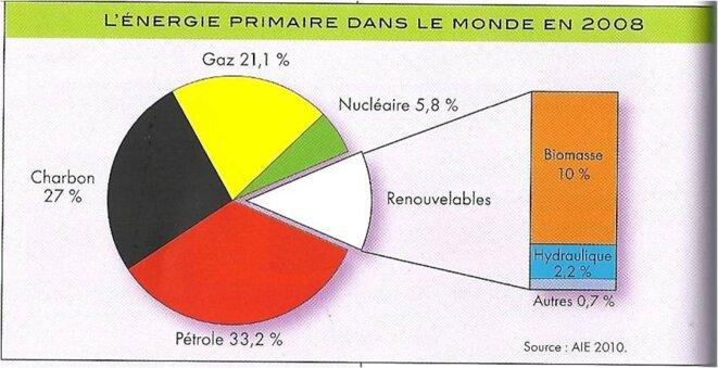 Source : Bertand Barré et Bernadette Mérenne-Schoumaker, Atlas des énergies mondiales (2011)