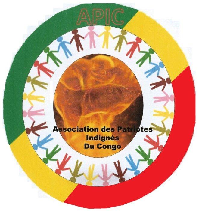 img-logo-apic0001
