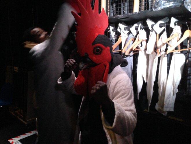 En coulisses, les masques de coq