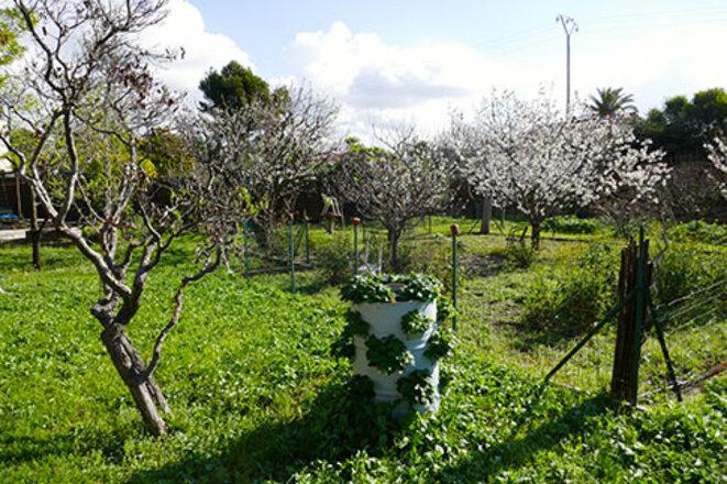 jardin-la-ciotat