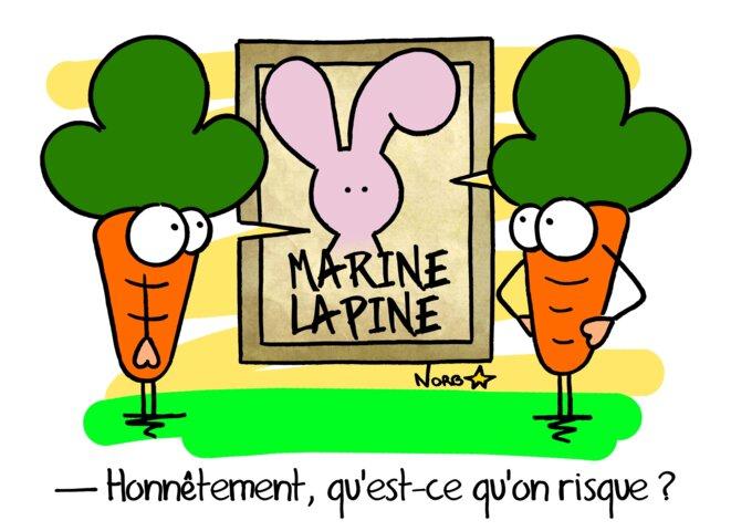 Marine Lapine © Norb