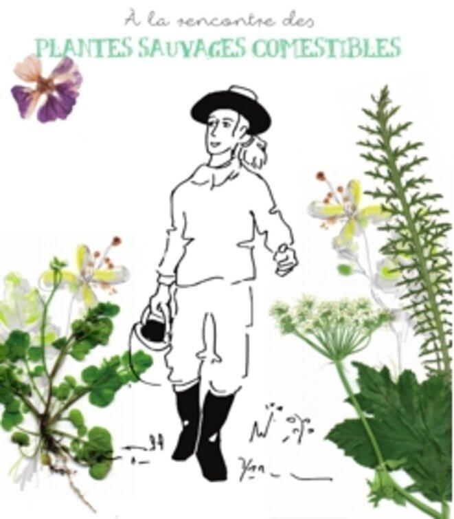 a-la-rencontre-des-plantes-sauvages-comestibles-connected-by-nature2