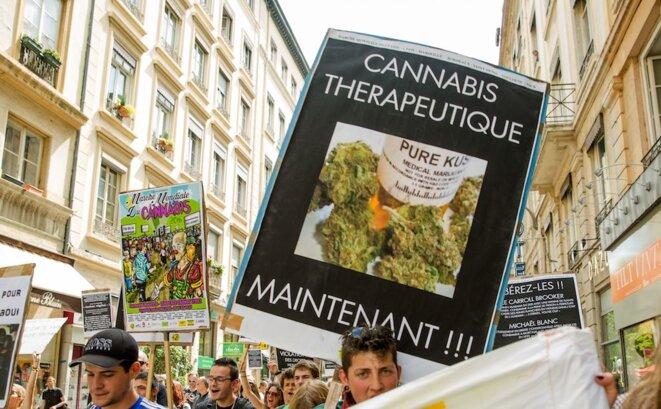 Marche Mondiale du Cannabis 2016 à Lyon