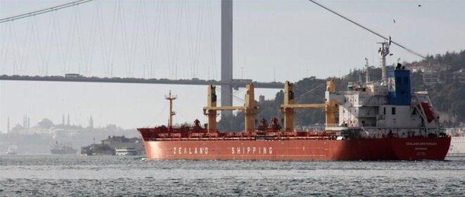 Le « MV Zealand Amsterdam », acheté neuf via les Pays-Bas par le clan Yildirim pour environ 33 millions d'euros, sur le Bosphore à Istanbul. © D.R.