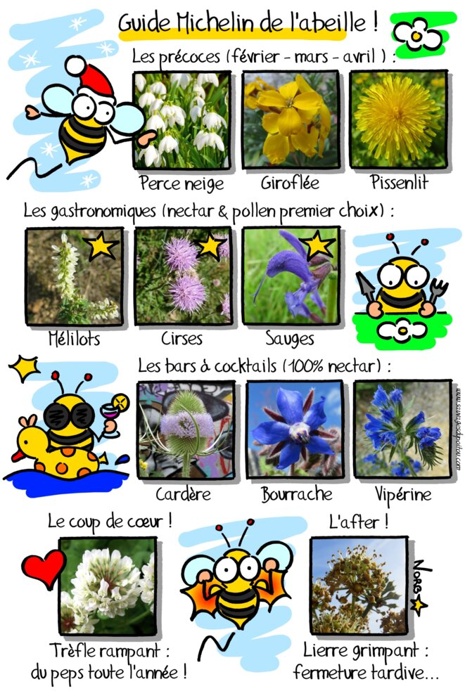 Guide Michelin de l'abeille! © Norb