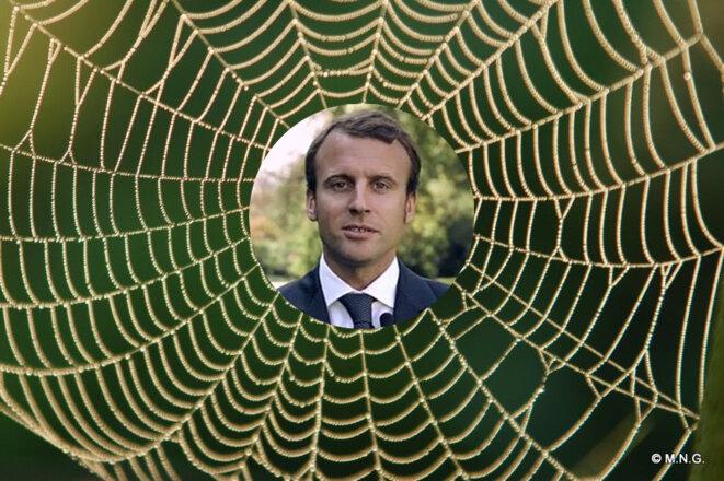 """Résultat de recherche d'images pour """"macron l araignée"""""""