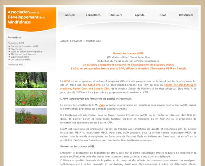 Page d'accueil de l'association mindfulness.org MSBR  - Réduction du Stress Basée sur la Pleine Conscience