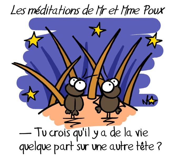 Trois dés pour un dessin (n°4): les méditations de Mr et Mme Poux © Norb