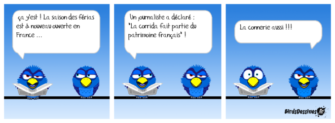 birds-dessines-corrida