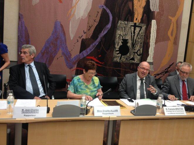 Brigitte Allain présente son rapport à la commission des Affaires économiques © F. Guerrien