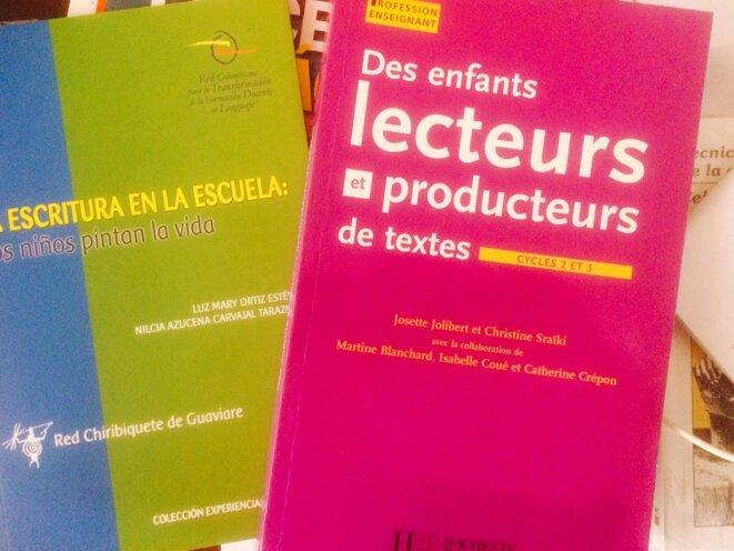 Rapports d'expériences de la méthode globale appliquée en France et en Colombie