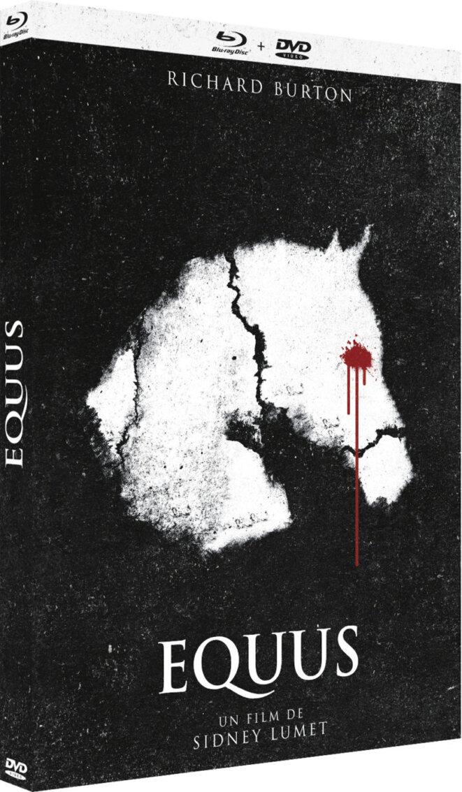equus-visuel-3d-714x1225
