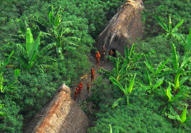 Indiens isolés de la vallée du Javari. © DR