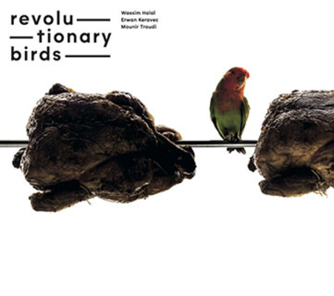 revolutionary-birds