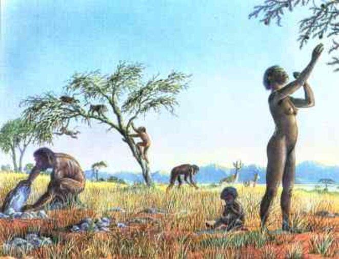 alimentation-prehistorique-2