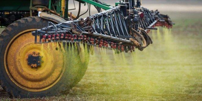 Epandage de glyphosate avant récolte