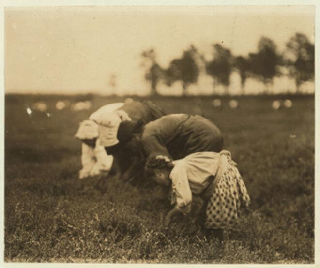 Tenjet calone, 1910, photo de Lewis Wickes  Hines © Library of congress, prints & photographs division, Washington DC