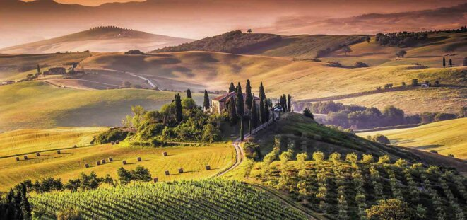 Paysage de Toscane © DR
