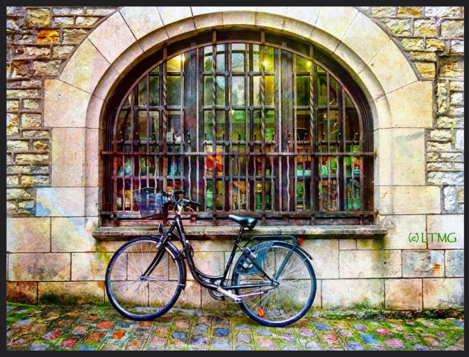 Vélo © Luna TMG