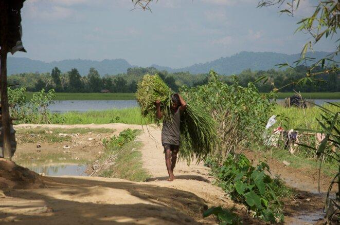 Anjiman, dernier village bangladais avant la frontière. Derrière la rivière, c'est l'Arakan © Guillaume Delacroix