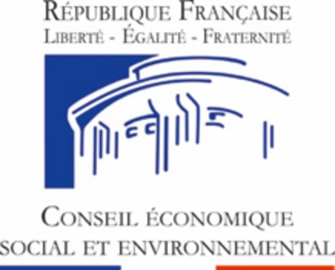 Logo  du CESE