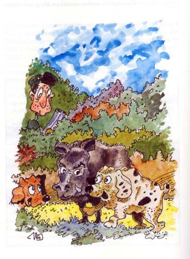 civet-sanglier