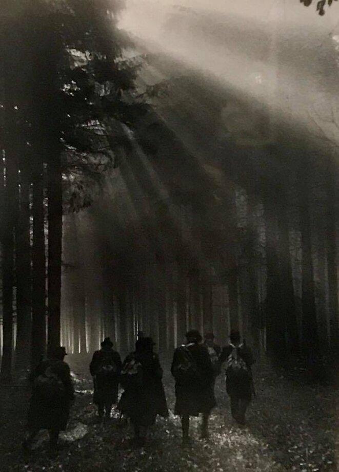 """Gotthard Schuh,""""Promenade en sous-bois"""", photographie, 1932, Collection Marin Karmitz, Etranger résident, La Maison Rouge - Fondation Antoine de Galbert, Paris © Guillaume Lasserre"""