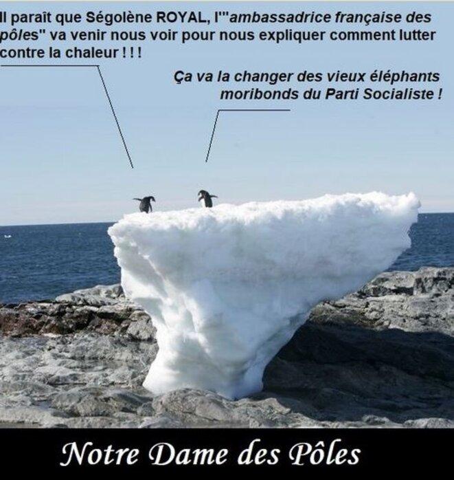royal-aux-poles