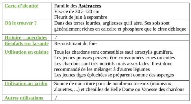 tableau-chardon-commun