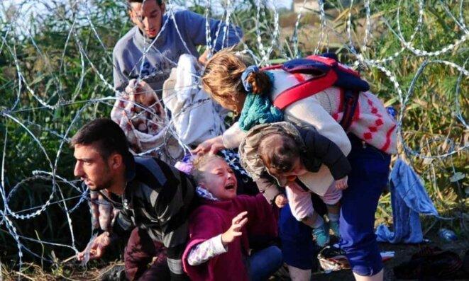 Une famille de migrants rampe sous des fils barbelés à la frontière serbo-hongroise le 27 août 2015 © Attila Kisbenedek
