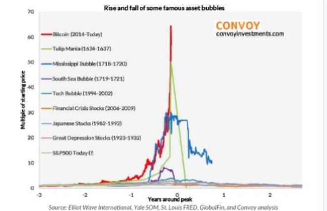 Quelques exemples de bulles spéculatives historiques. En rouge, le bitcoin. © DR