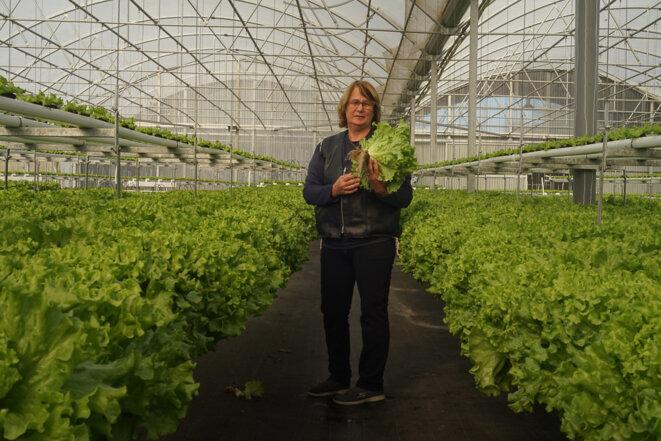 Irene Torcato Silva, dans la serre de production des salades hors sol. © AP
