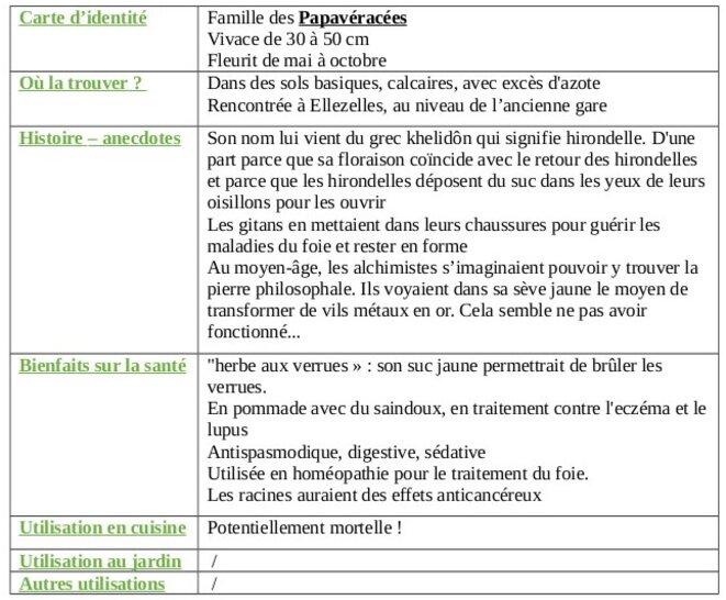 tableau-chelidoine