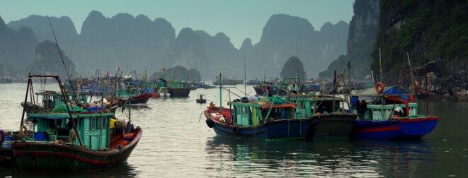 halong vietnam © pcompas