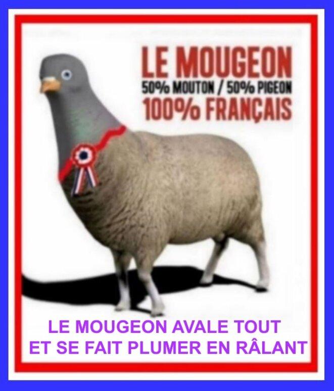 Mougeon © x
