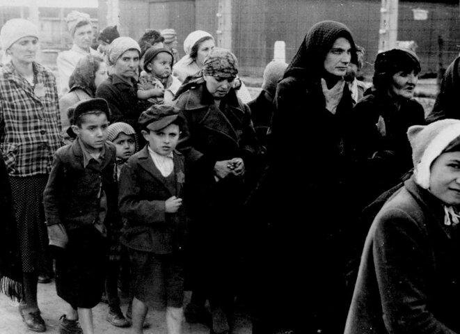 Femmes et enfants arrivant à Auschwitz-Birkenau de Hongrie, se dirigeant vers les chambres à gaz, le 27 mai 1944: Jollan Wollstein et ses 4 enfants Erwan, Judith, Dori, Naomi. Ainsi qu'Edith, Henchu Falkovitch, les soeurs Kreindel et Sasha © Auteur inconnu,