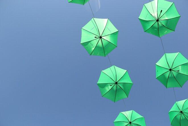 Parapluies verts