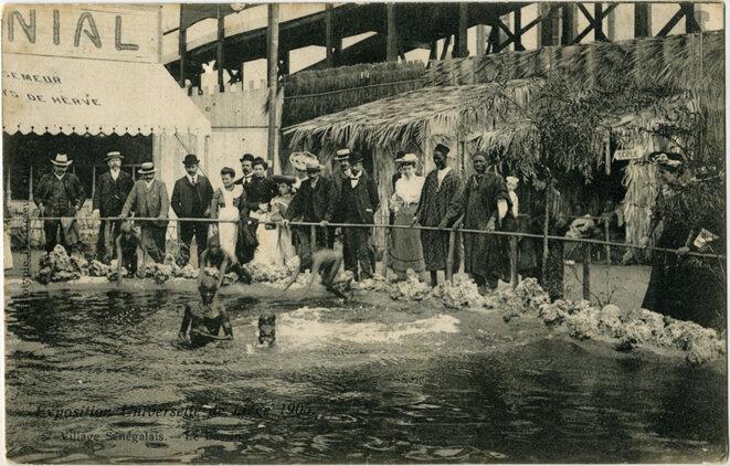Photo d'une des mise en scène «zoologique»