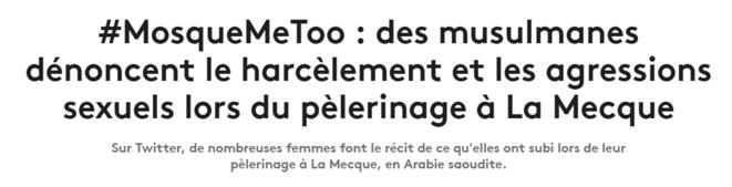 capture-mosquemetoo-titre-france-info