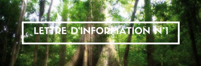 La Lettre d'Information des Droits des Peuples Autochtones de Guyane N° 1.