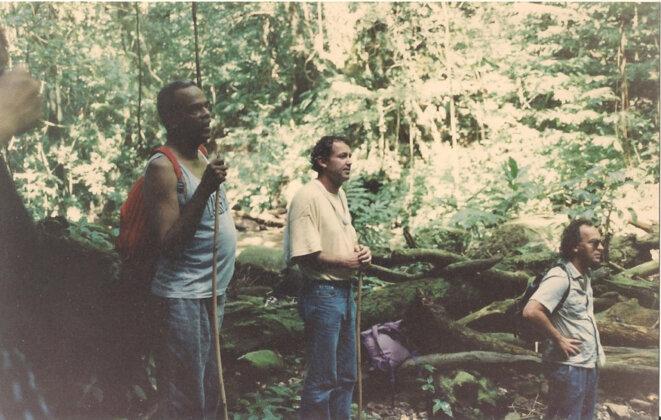 Dans la forêt tropicale entre Prêcheur et Grand Rivière.