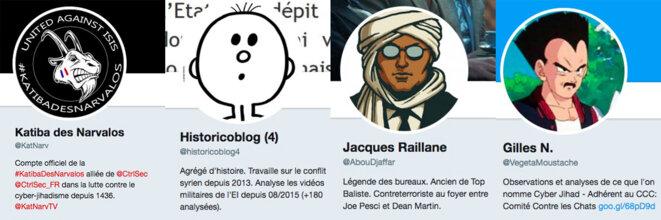 Les alias de ces simples citoyens qui passent un peu plus que leur temps libre à suivre le phénomène djihadiste © DR