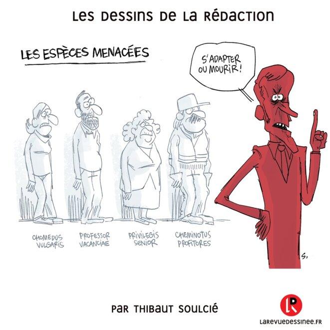 © T. Soulcié