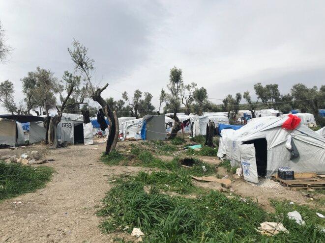 Plus de 500 réfugiés dorment sur cette ferme, Olive Grove, juste à côté le camp Moria. © Mortaza Behboudi