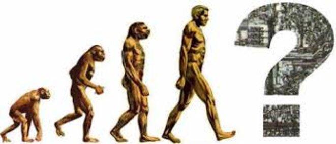 hominisation