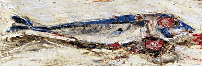 La France poisseuse. Le poisson ne pourrit pas par la tête, mais par le ventre © Frédéric Glorieux