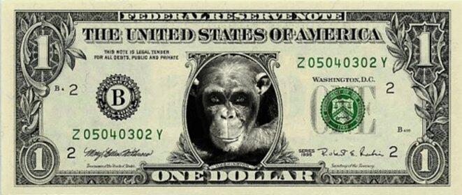 the-new-dollar