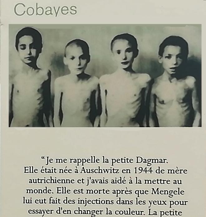 """Les enfants cobayes ou l'Europe des nazis et de leurs complices, """"collaborateurs"""" du régime de l'État dit Français. © Philippe Léger"""