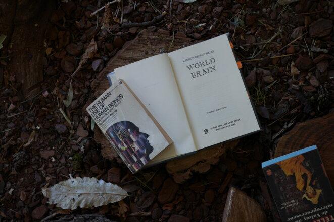 """Gwenola Wagon et Stéphane Degoutin, """"Forêt thérapie"""", CAC La Traverse, Alforville, 2018 © Gwenola Wagon et Stéphane Degoutin"""
