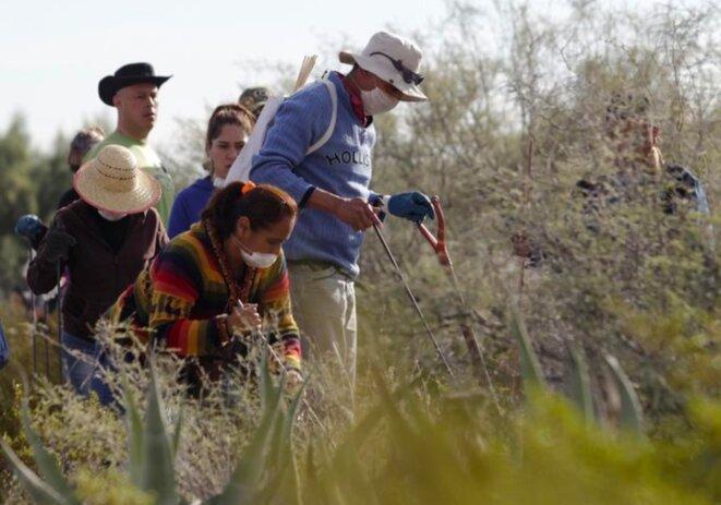 En 2015, des familles de disparus victimes de la « guerre contre la drogue » recherchent le corps de leurs proches dans l'État de Coahuila. © Reuters